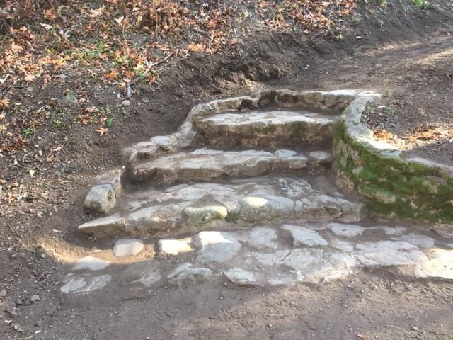 Sycamore Trail_Alum Rock Park.jpg
