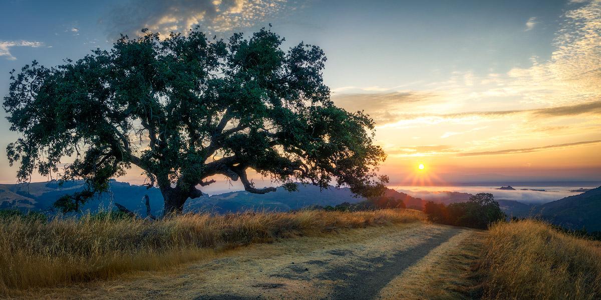 WBA_Rancho-Canada-OSP_20180729_73002_RCDO-sunrise-JPG1200-1