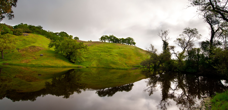 pond_Rancho Canada - Vista -SJ - 6-7-2011 (7)