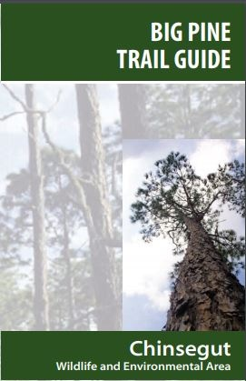 Download Big Pine Trail Guide