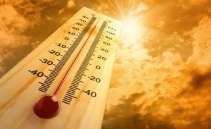 energy-management-summer