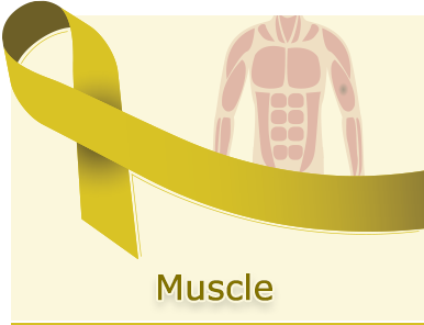 Muscle-Cancer-Panel