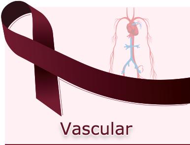 Vascular-Cancer-Panel