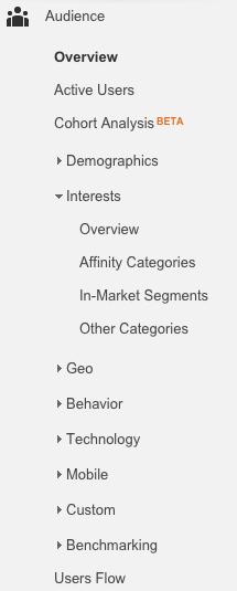 Google_Analytics_Audience_Screenshot