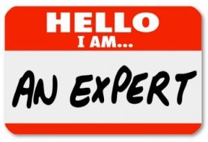 expert-300x205-1.jpg