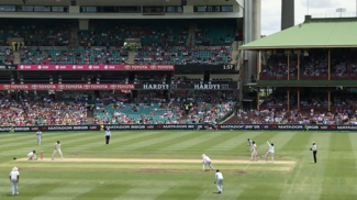 cricket brand crisis 1
