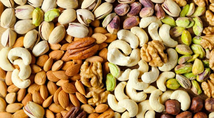 3 NUT VARIETIES THAT ARE A MUST FOR ANY DIET - yoursmiledirect