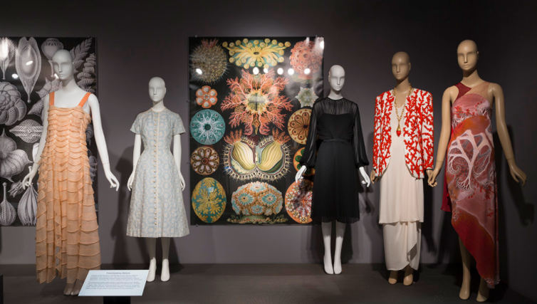 Can Fashion and Nature Co-Exist? We Visited The Museum at FIT to Find Out.