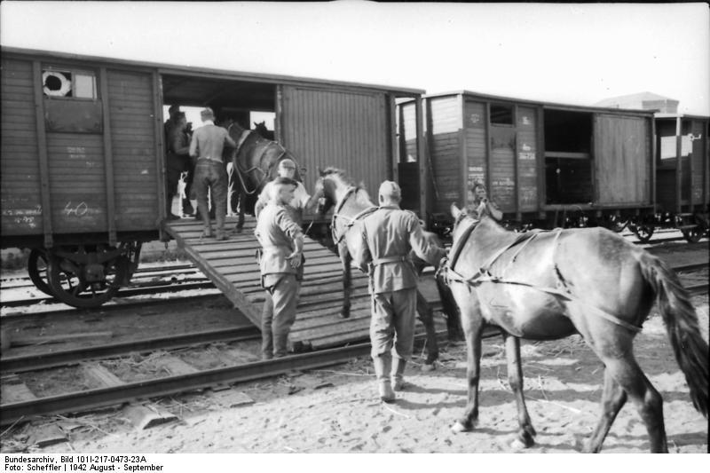 """German Federal Archive. Description: Sowjetunion, Süd.- Verladen von Pferden in einen Zug """"Soviet Union, South.- Horses being loaded into a train."""" [1:42] August 1942"""