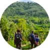 Pachamama Alliance Journeys