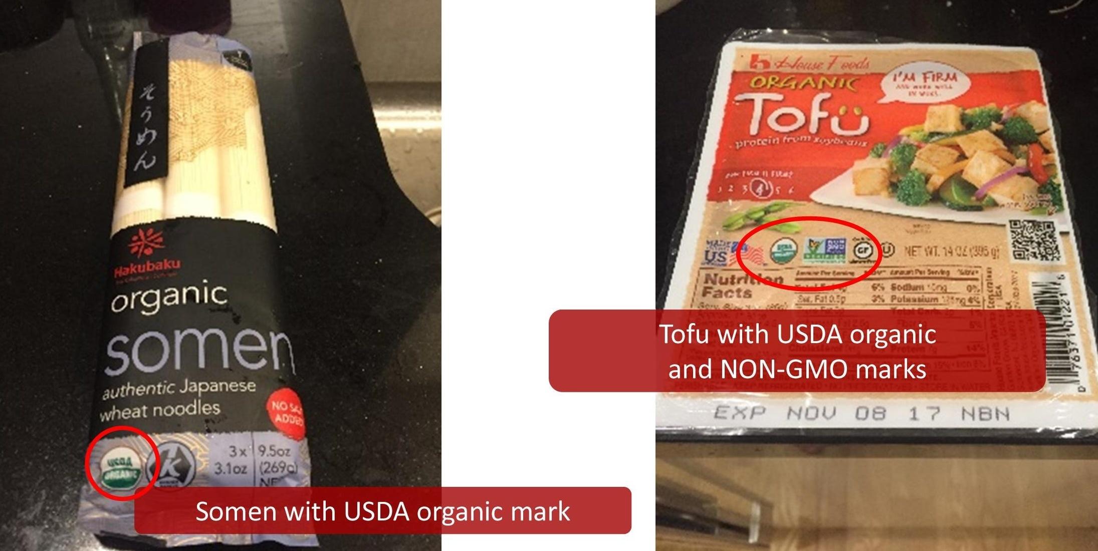 somen_and_tofu.jpg