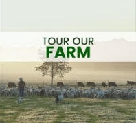 Tour White Oak Pastures