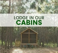 Lodge in Our On-Farm Cabins