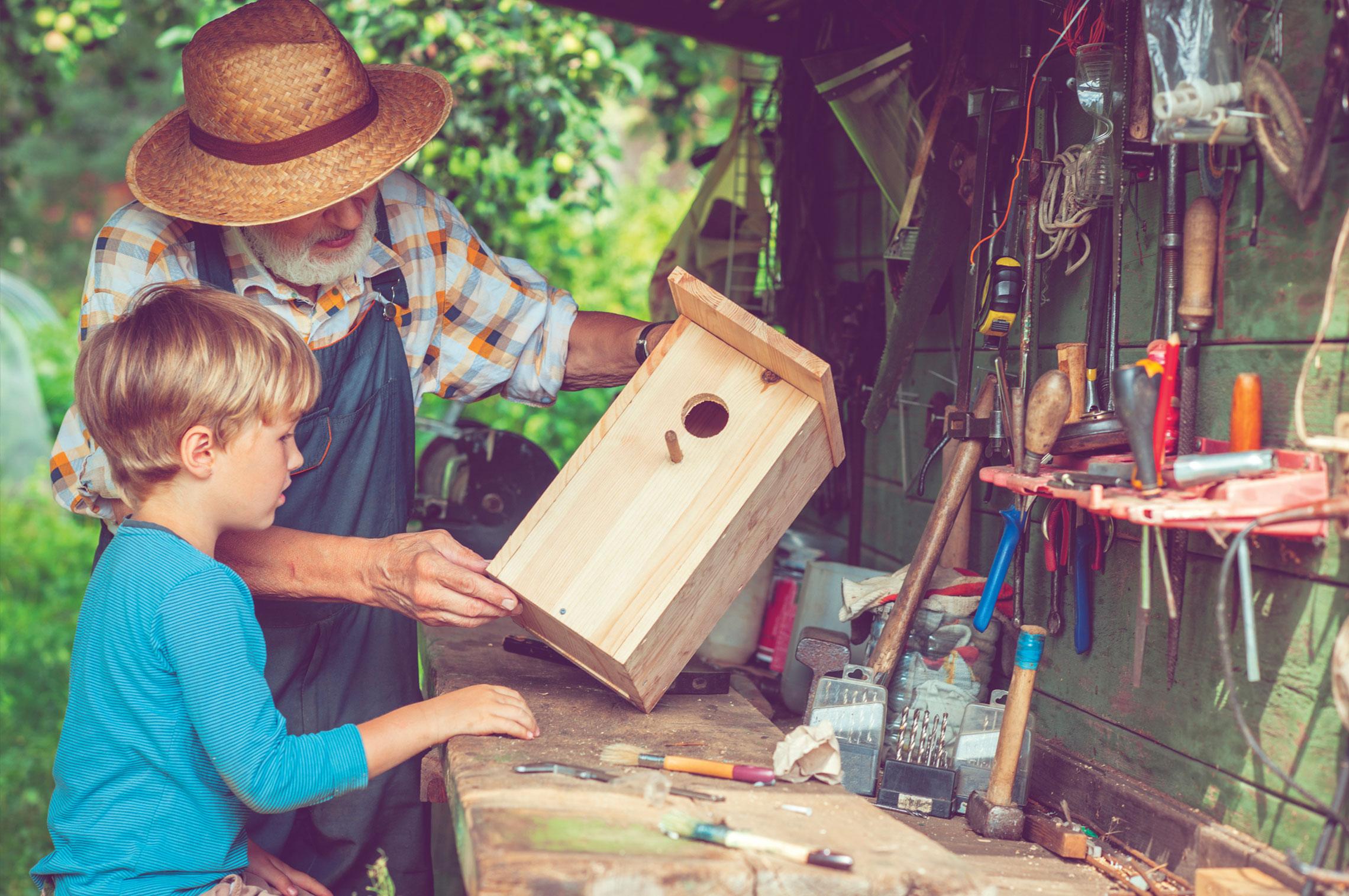 On Bird Houses & Retirement