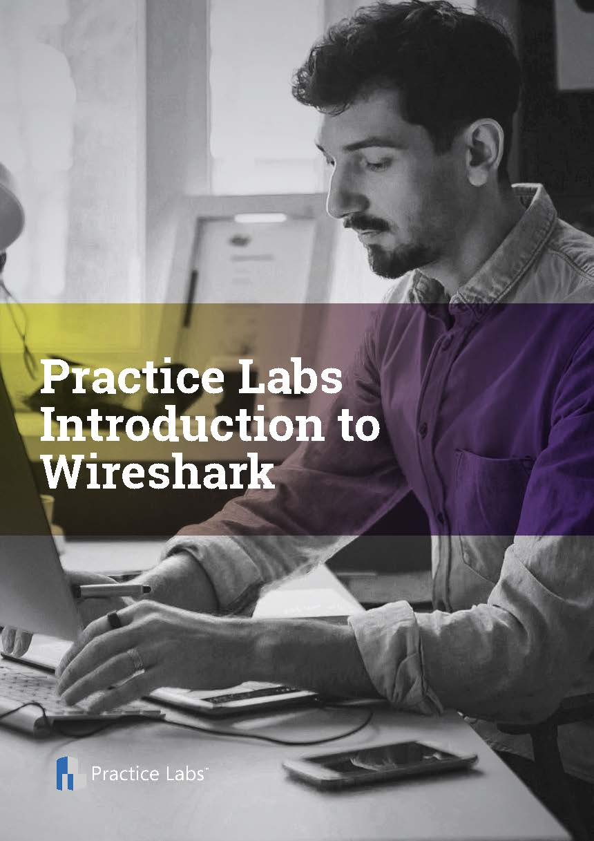 Practice Labs Introduction to Wireshark