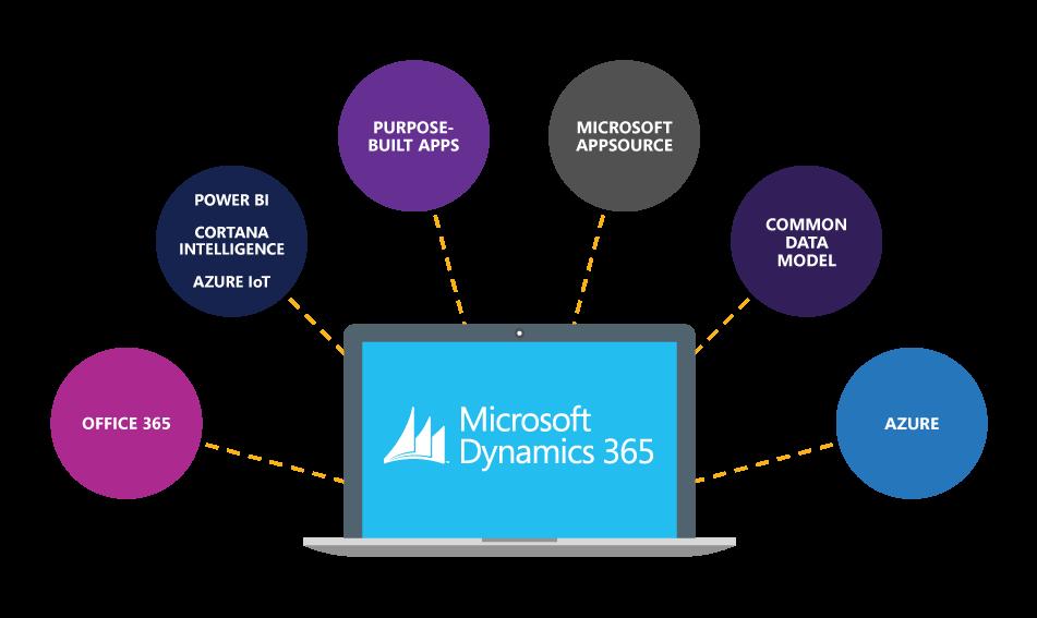 Het Dynamics 365 platform