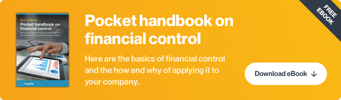 Financial control: definition, objectives and implementation