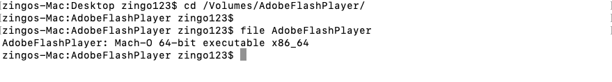 Mach-O file inside DMG file