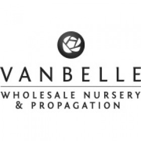 Van Belle Nursery