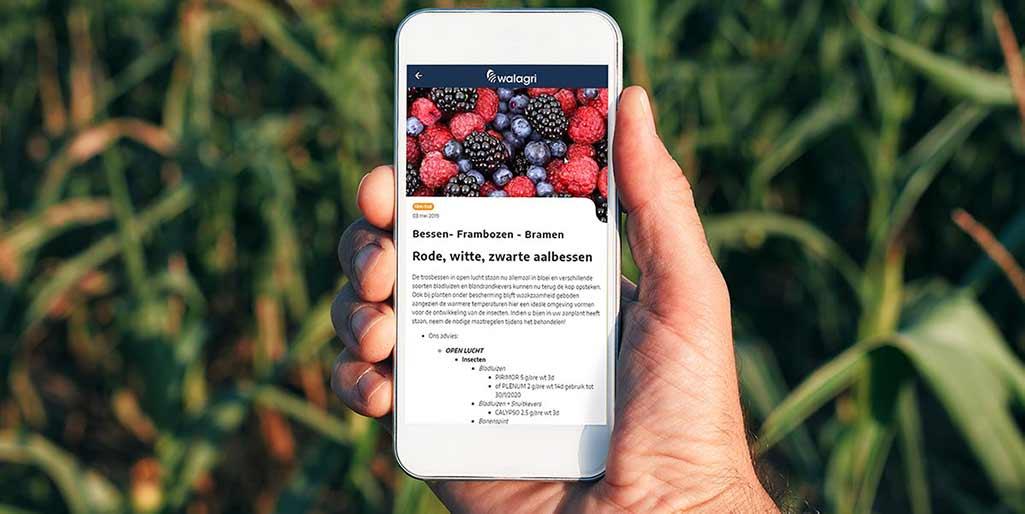 Arvesta launcht von Cegeka entwickelte App für Landwirte
