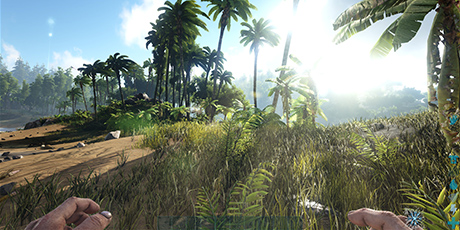 Ark: Survival Evolved - Launch Options & Graphics Settings