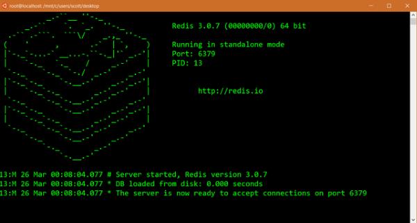 Bash e Linux