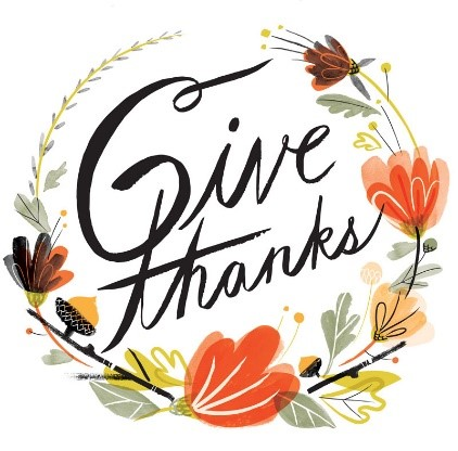CELLTREAT Give Thanks Promo