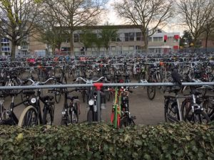Bikes on the Dutch eschange visit
