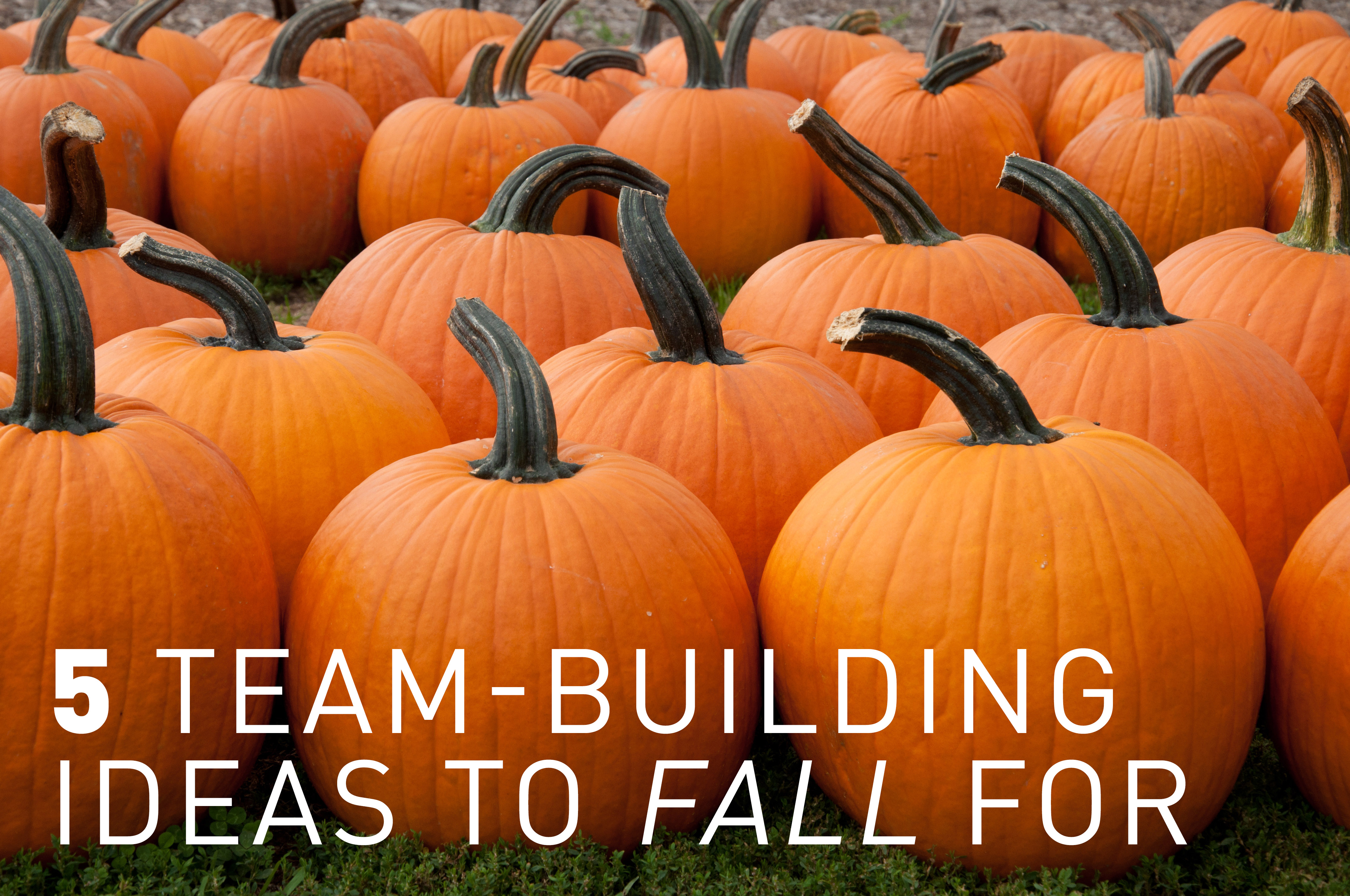 Team_Building_Ideas_to_Fall_for.jpg
