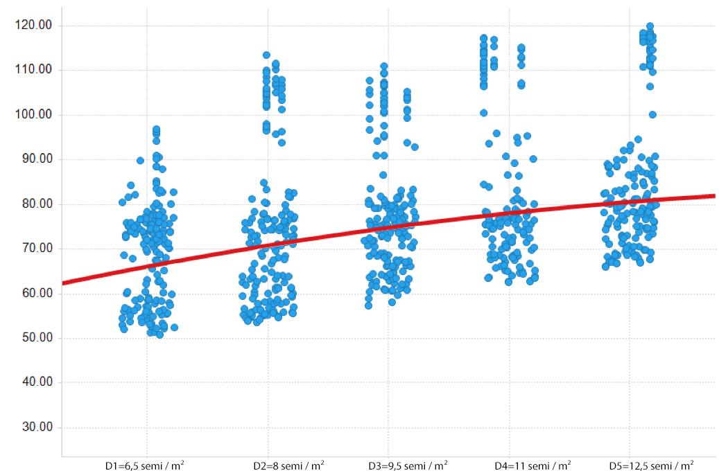dots_graph (1)