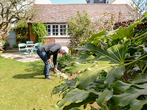 Older man landscaping his home in the spring