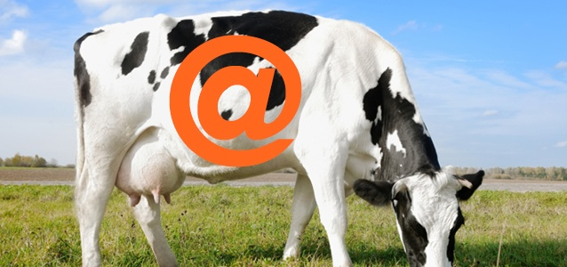 5 Tips to Beef Up Your Email Security