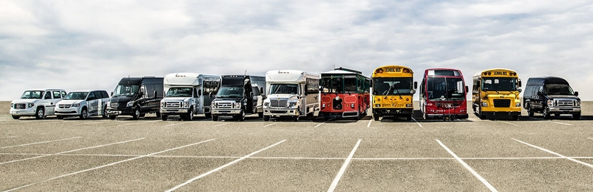 Creative Bus Sales Full Line Up