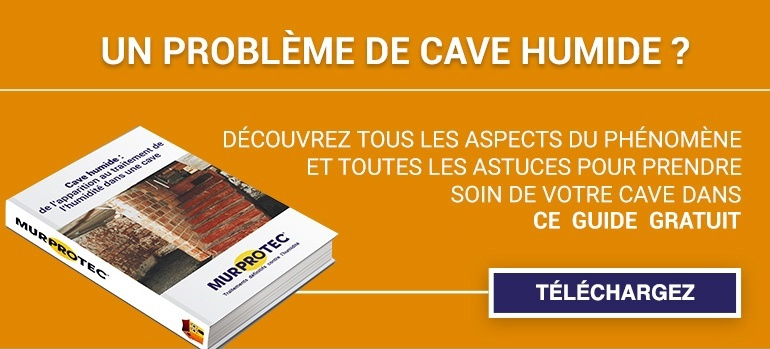 cave humide solution avant des solutions pour lutanchit de la cave pour solution. Black Bedroom Furniture Sets. Home Design Ideas