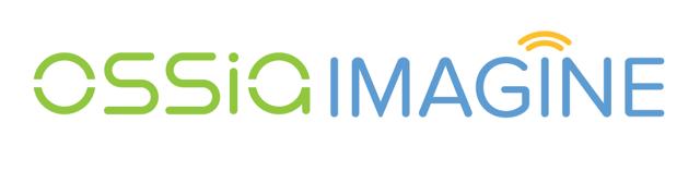 Ossia_Imagine logo_white bkgd