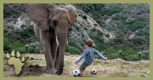 LP_FInn_soccer