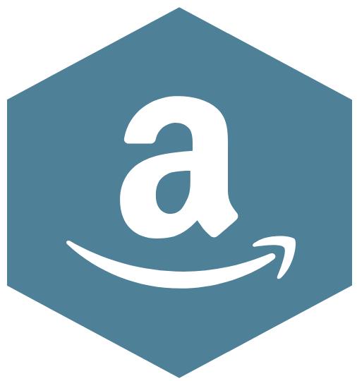amazon arrival challenges