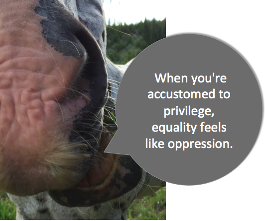 Executive Privilege Australia: When You're Accustomed To Privilege Equality Feels Like