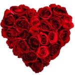 heart-roses1-300x300