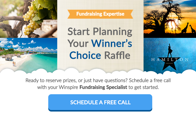 schedule a free fundraising raffle consultation