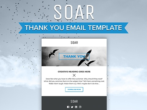 Amazing Thank You Email Template Photos  Best Resume Examples For