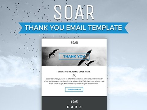 Amazing Thank You Email Template Photos - Best Resume Examples For