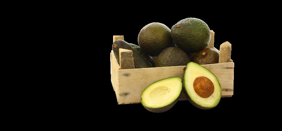 Refrigeración industrial de frutas y verduras