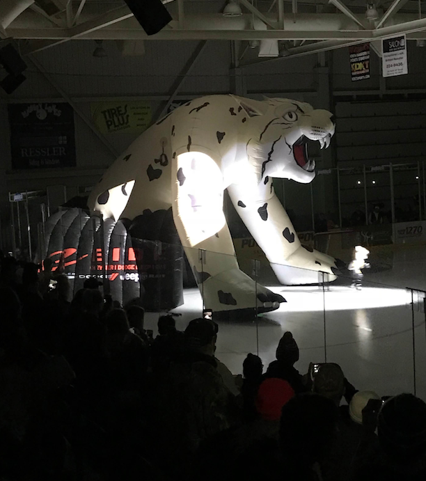 Bismarck Bobcats' Zeus - Sponsored by Eide Chrysler