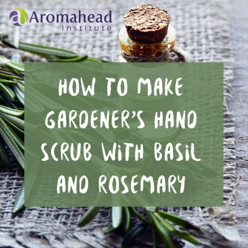 How to Make Gardener's Hand Scrub with Basil and Rosemary