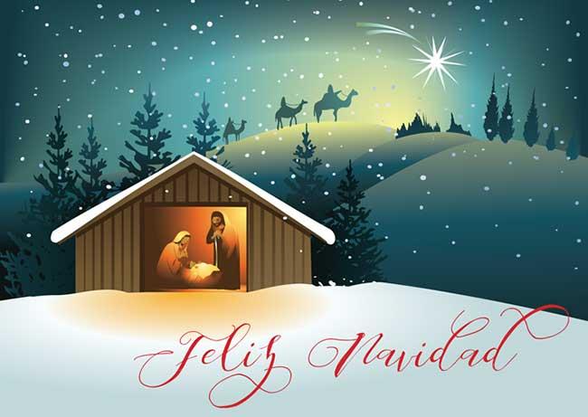 christmas_snow-espanol650.jpg