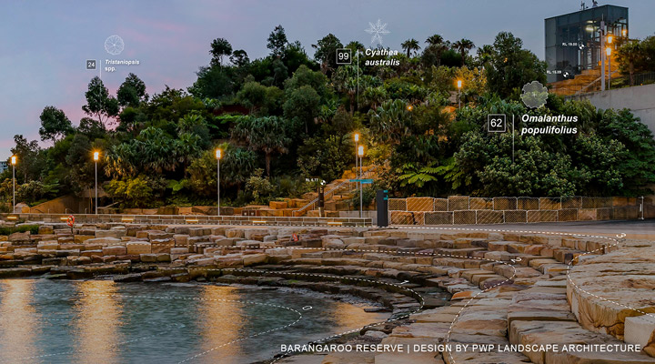 PWP Landscape Architecture Renews Sydney's Waterfront With Barangaroo