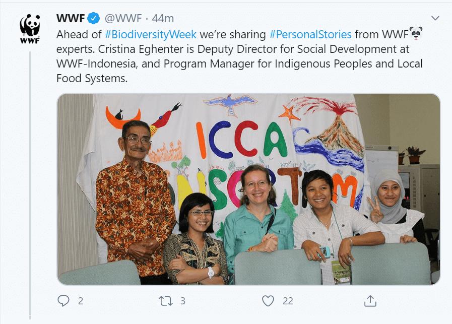 wwf-nonprofit-twitter