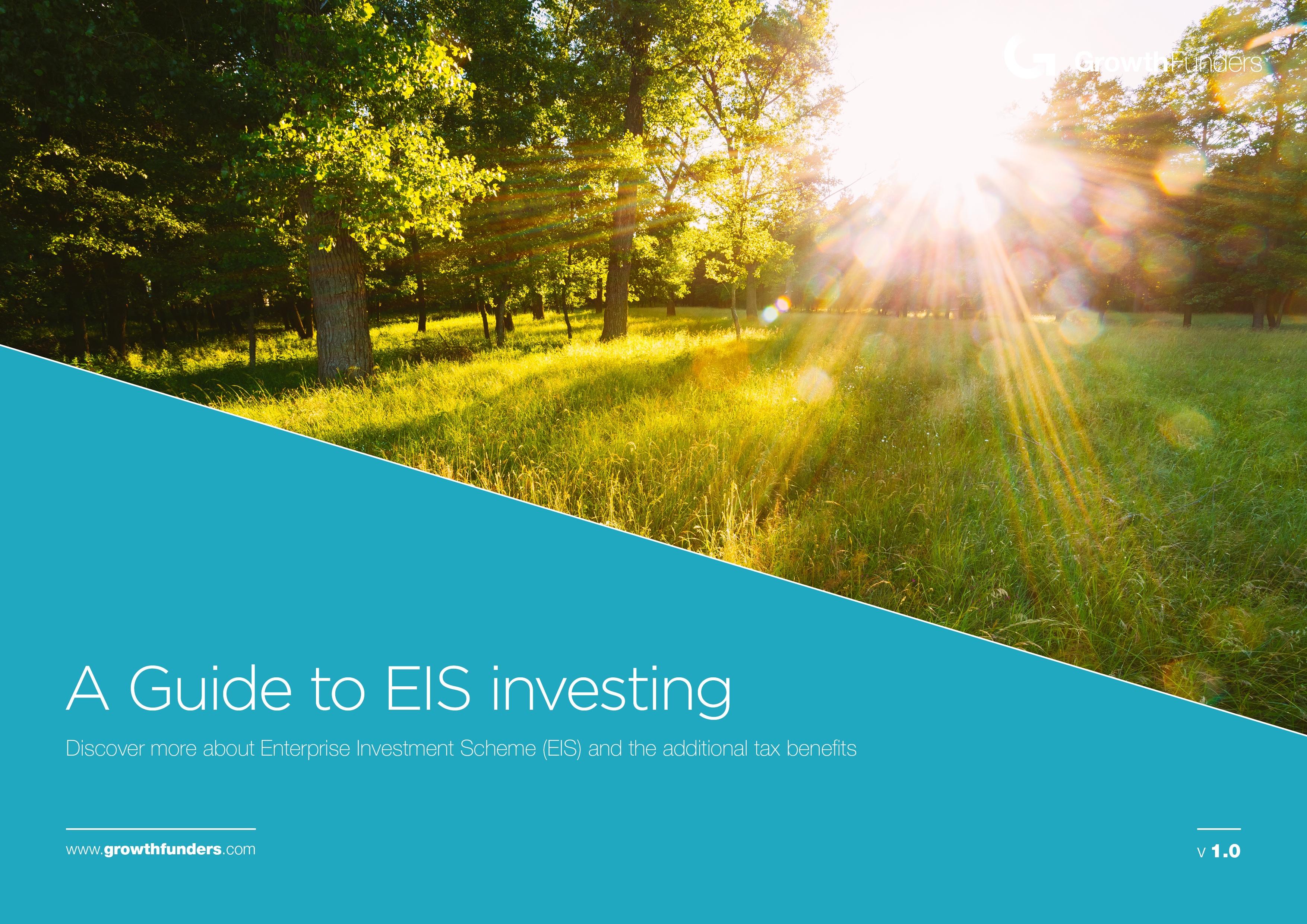 eis-guide-1