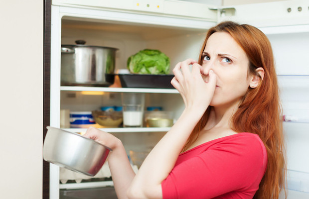10 Green Methods for Removing Bad Odors from Your Home